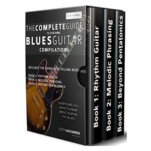 Avis The Complete Guide to Playing Blues Guitar Compilation